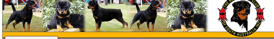Rottweiler Club of SA Inc