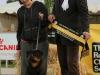 rcsa-june-2013-baby-puppy-in-show-alchemy-powderfinger